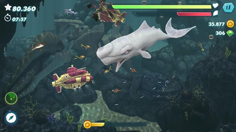 Hungry Shark Evolution mod android